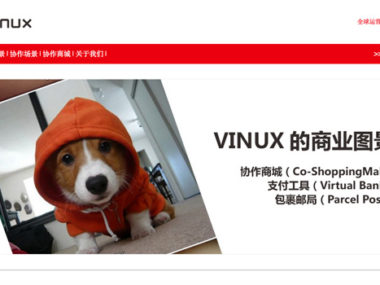 vinux cina e-commerce