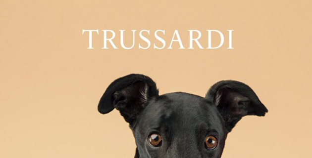 Pet fashion by Trussardi